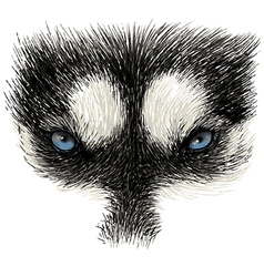 Husky eye 02 vector