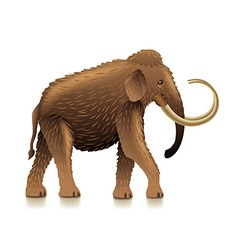 Mammoth isolated on white vector