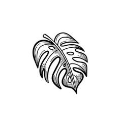palm leaf hand drawn sketch icon vector image