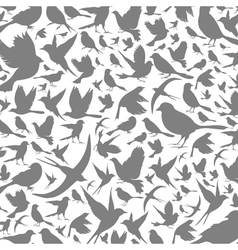 Background of birds3 vector