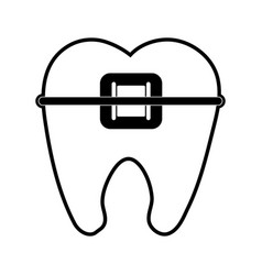 Molar with braces dentistry icon image vector