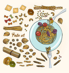 set of different types pasta colorful hand drawn vector image vector image