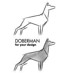doberman sketch vector image