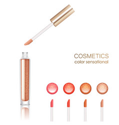 Lip Gloss Set vector image vector image