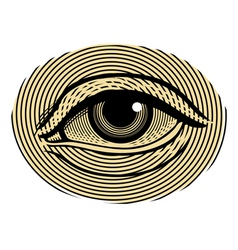 Human eye in vintage engraved style vector image
