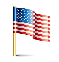 object usa flag vector image