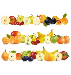 Set of fruit backgrounds vector