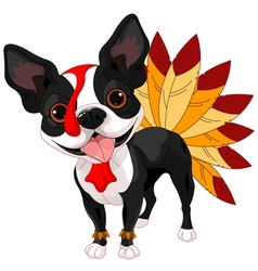Thanksgiving boston terrier vector