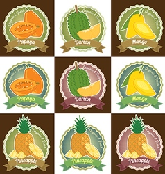 Set of various tropical fruit tag label badge vector