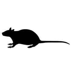 A black silhouette rat vector