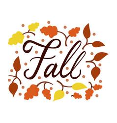 modern brush phrase fall vector image