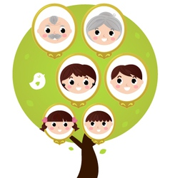 Cartoon generation family tree isolated on white vector