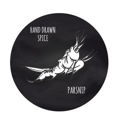 Spice parsnip icon on blakboard backdrop vector