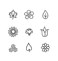 Floral icon set flowers and leaves nature line vector
