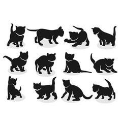kittens silhouettes vector image