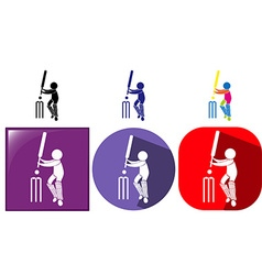 Three design sport icons for cricket vector