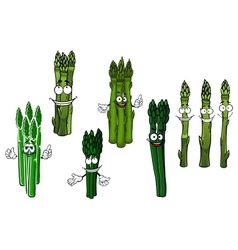 Cartoon bundles of green asparagus vegetables vector image vector image