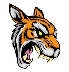 Tiger mascot character vector