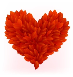 Beautiful heart made from red petals vector