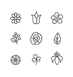 Floral icon set flowers berry and leaves line art vector