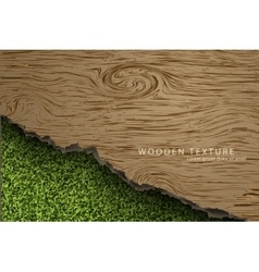 wooden background with shadows and grass vector image