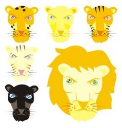 feline heads vector image