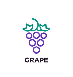 grape linear logo element vector image