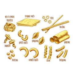 Sketch icons of italian pasta variety vector