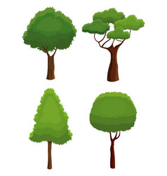 tree nature various plant environment vector image