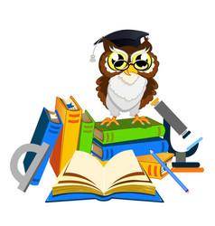 cheerful school owls vector image