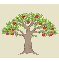 Green tree with red ripe apples vector