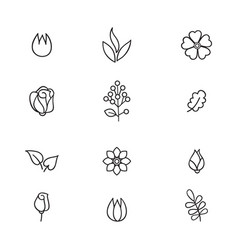 floral icon set flowers and leaves line art icons vector image