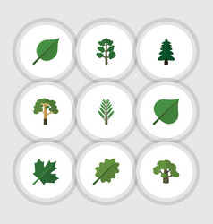 Flat icon nature set of alder wood tree and vector