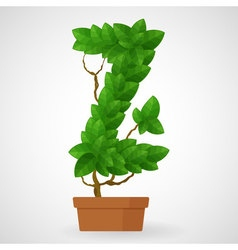 Green foliage houseplant alphabet vector image