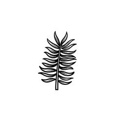 Leaves of palm tree hand drawn sketch icon vector