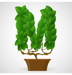 Green foliage houseplant alphabet vector