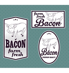 Bacon vintage labels set vector