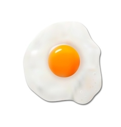 Fried egg vector