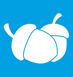 Acorn icon white vector