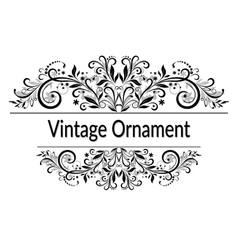 Vintage abstract calligraphic ornament vector