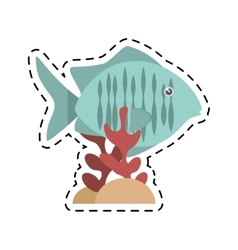 Tropical fish sea habitat graphic coral vector