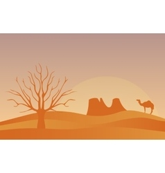 Horizontal banner with lonely desert isolated vector