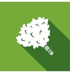 Bath broom icon vector image vector image