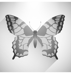 Butterfly Icon or background vector image vector image