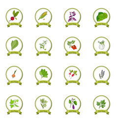 eco foods set vector image vector image