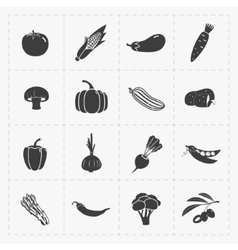 Vegetable Black Icon set on White vector image vector image