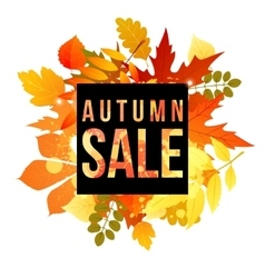 Autumn banner for your design vector