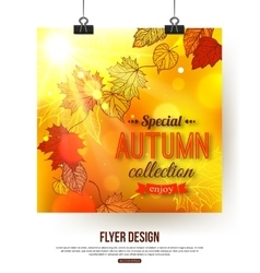 Autumn flyer with shining foliage autumn sale vector