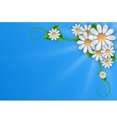 White flowers on blue background vector