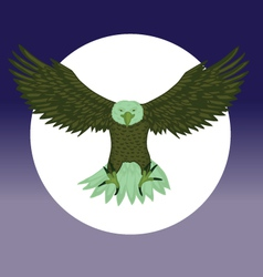 Eagle night vector